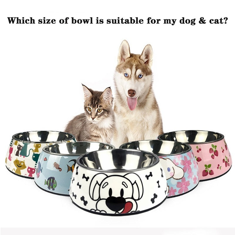 Colorful Pet Bowls