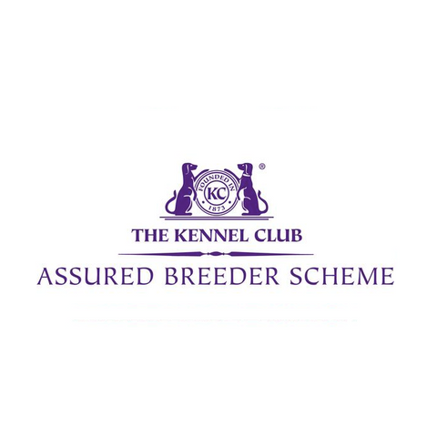Assured Breeder Scheme Renewal – Supporter Member