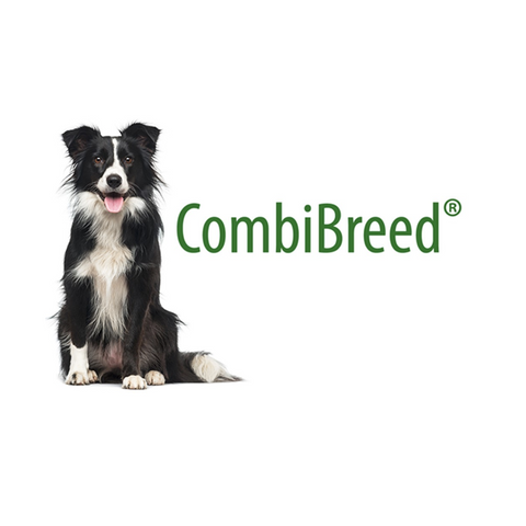 CombiBreed Health Test Packages