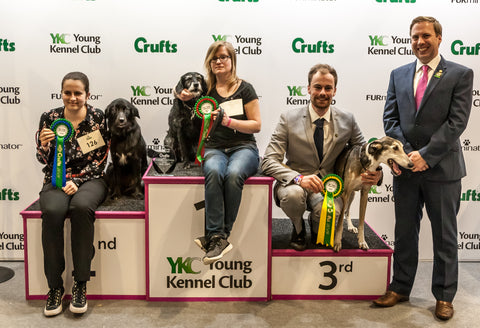 Young Kennel Club Crufts Crossbreed 2020 Qualifier – Discover Dogs