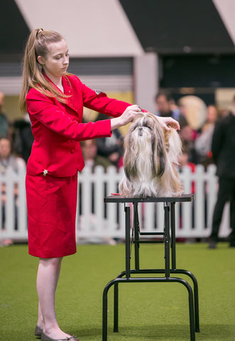 Young Kennel Club Crufts 2019 Handling Qualifier – Newark