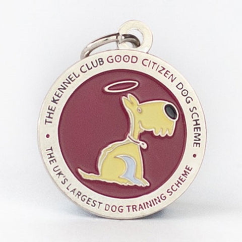 GCDS Gold Dog Tag