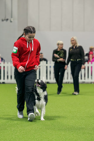 Young Kennel Club Crufts 2019 Obedience Qualifier - Newark