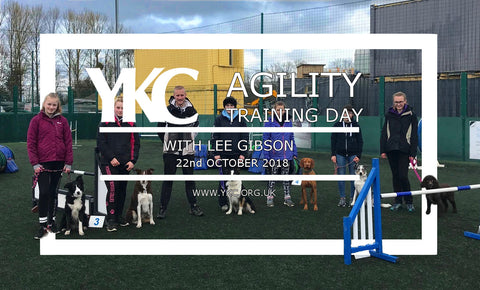 Lee Gibson Agility Training Day  - Shrewsbury 22 October 2018