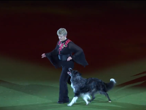 Young Kennel Club Obedience Training with Mary Ray - The Kennel Club
