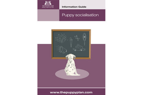 Information Guides - Puppy Classes/Training Bundle - The Kennel Club  - 1
