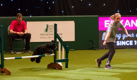 Young Kennel Club Crufts 2020 Jumping Qualifier – Discover Dogs