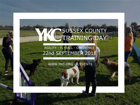 YKC Sussex County Flyball Agility Obedience Training Day 22 September 2018