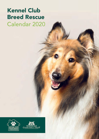 Breed Rescue Calendar 2020