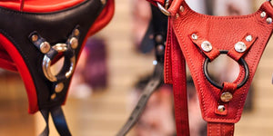 The 5 Things to Know about Strap-On Harnesses