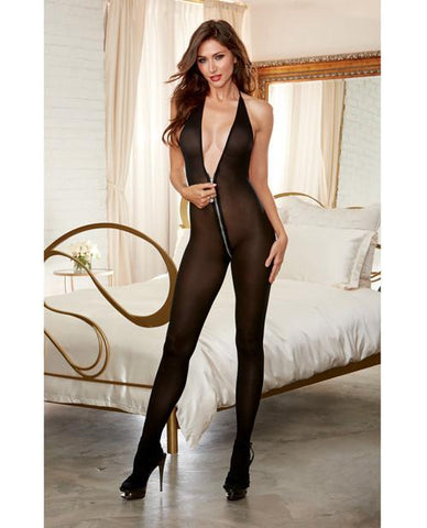 Sheer Zipper Bodystocking