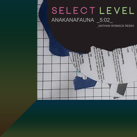 SELECT LEVEL - ANAKANAFAUNA (NATHAN WOMACK REMIX)