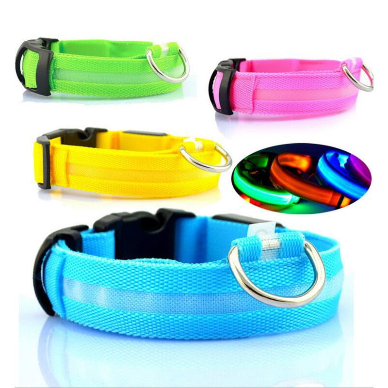 Rechargeable LED Nylon Dog Collar™ - Thankify - Fun, Innovative, Practical Products