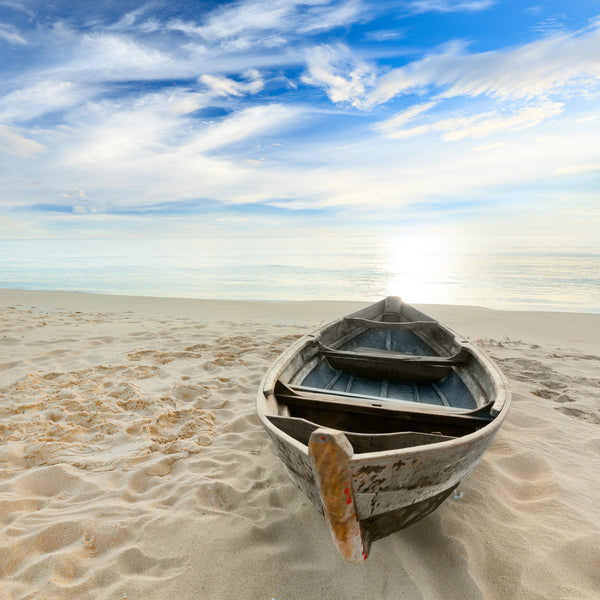 Beached Row Boat