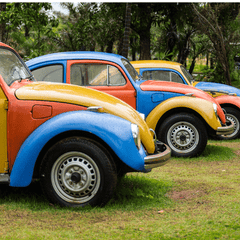 Colorful Volkswagen Beetles