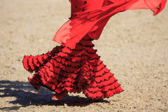 Flamenco Dancer