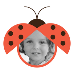Lovely Lady Bugs Room Icon Photos