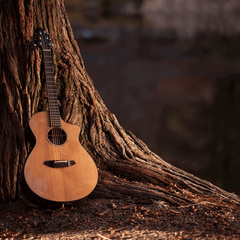 Countryside Guitar
