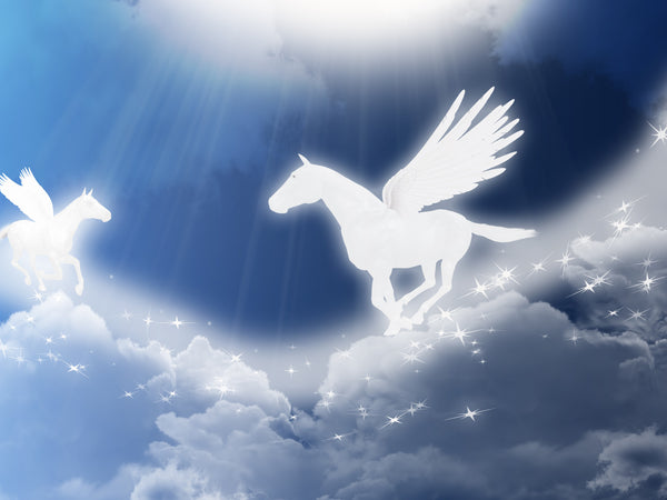 Pegasus Clouds