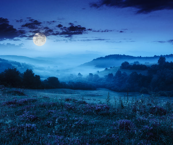 Misty Full Moon