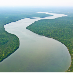 South American River