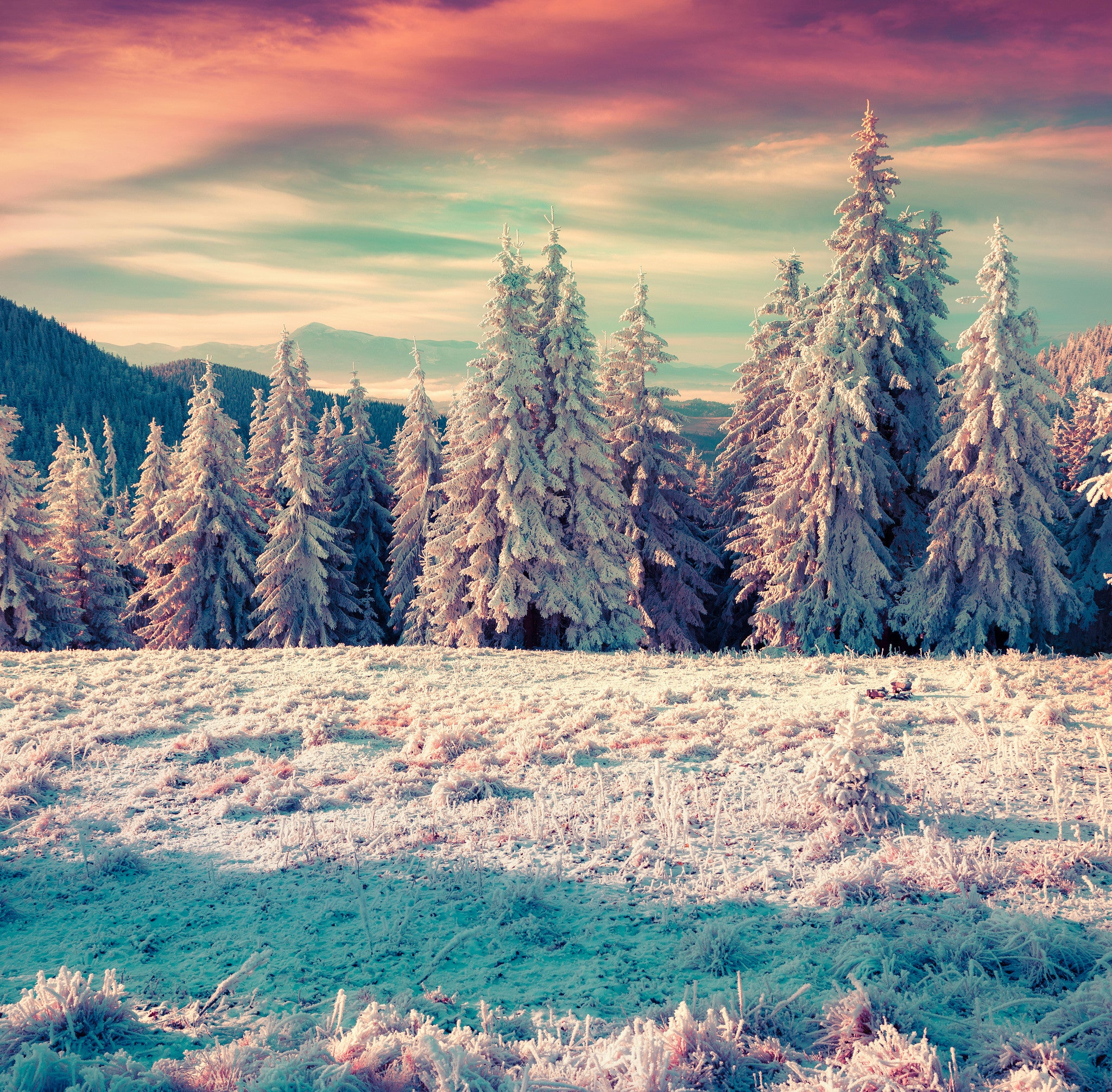 Colorful Winter Sunrise