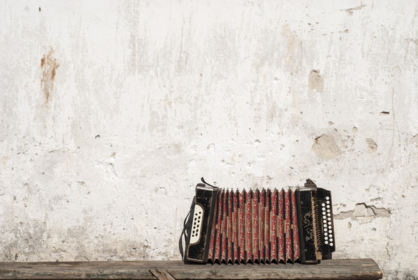 Timeworn Accordion