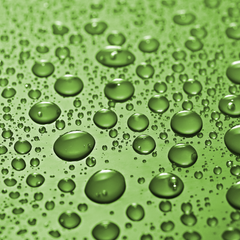 Green Raindrops