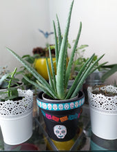 Load image into Gallery viewer, Upcycled Planters