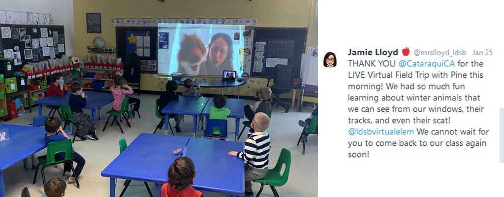 students attending a virtual field trip