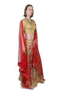 Red and Gold Lahenga/Bridal/Gold Ari Embroidery