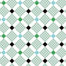 Load image into Gallery viewer, Uppercase Vol. 2 Feed Sack Green - Janine Vangool - Windham Fabrics half yard quilting fabric - square diamond black white blue