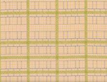 Load image into Gallery viewer, Friedlander Elevation Peach - Carolyn Friedlander - Robert Kaufman half yard quilting fabric