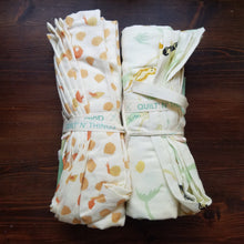 Load image into Gallery viewer, Organic Swaddle Cloth and Book Bundle - Day Dreamers  by Emily Winfred Martin - Baby Shower Gift - Baby Gift