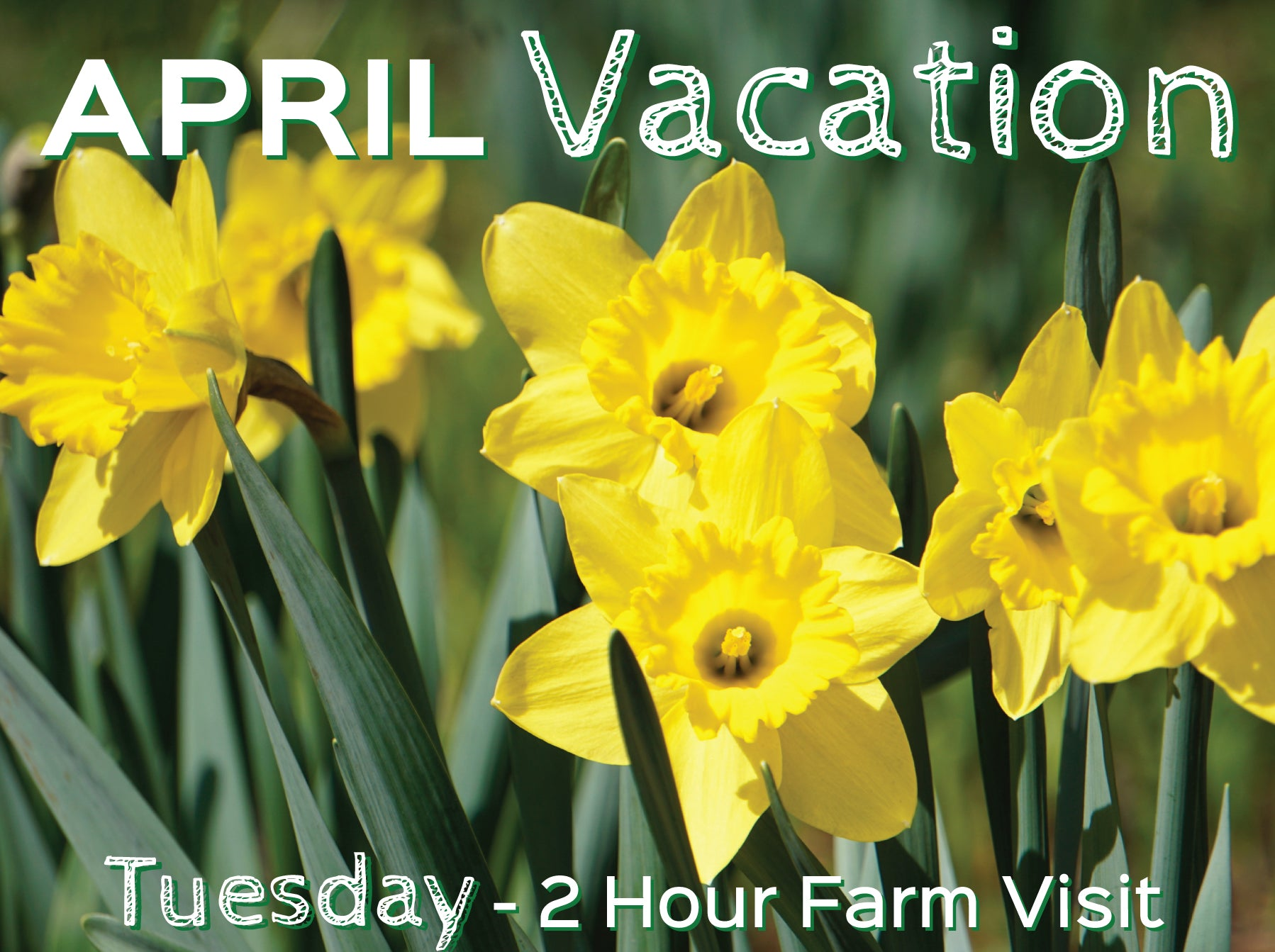 2 Hour Farm Visit Tuesday April 20th-VACATION WEEK