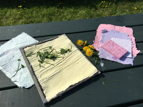 Afternoon Family Program-Natural Paper Making