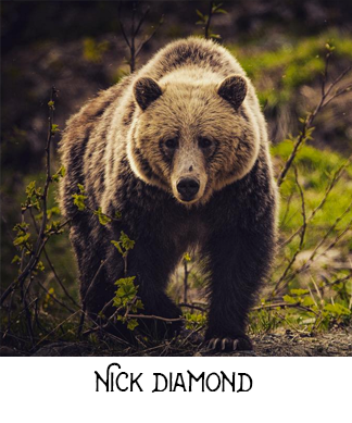 Nick Diamond Photography