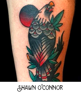 Shawn OConnor