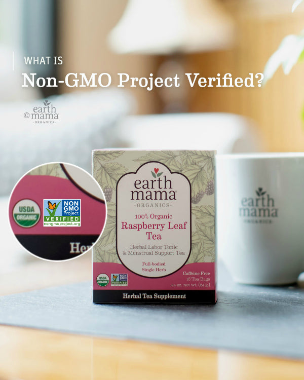 What is Non-GMO Project Verified? - Earth Mama Blog