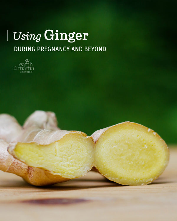 Using Ginger During Pregnancy and Beyond - Earth Mama Blog
