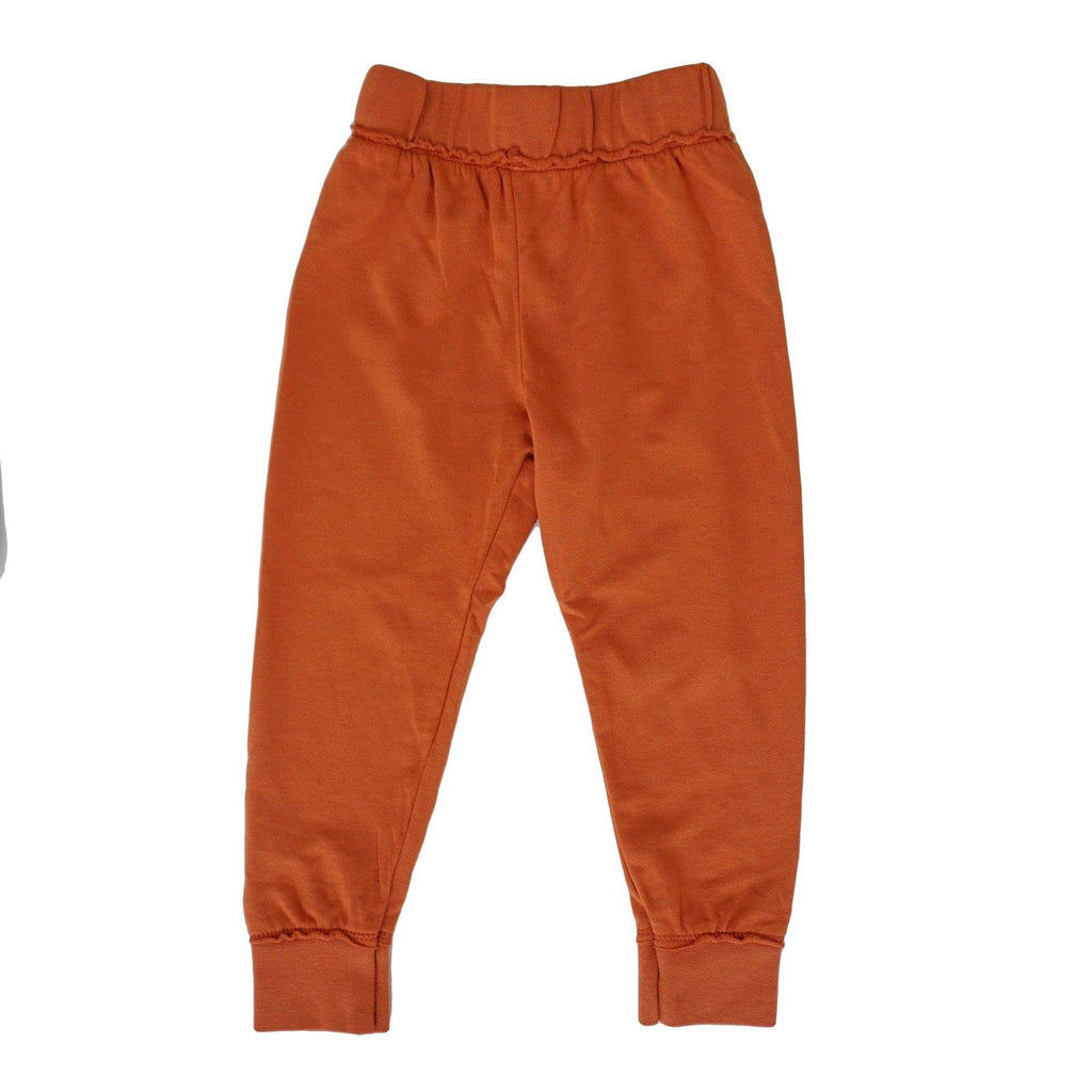 little dudes brick / 12m Carter Boys Jogger Brick