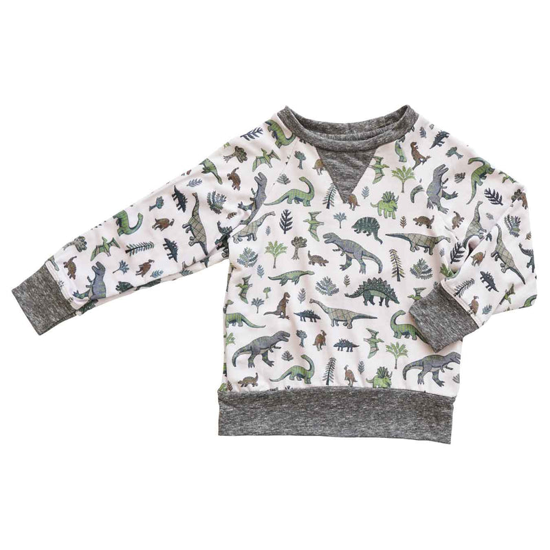 Little Dudes Iggy Sweatshirt Dino Tribe
