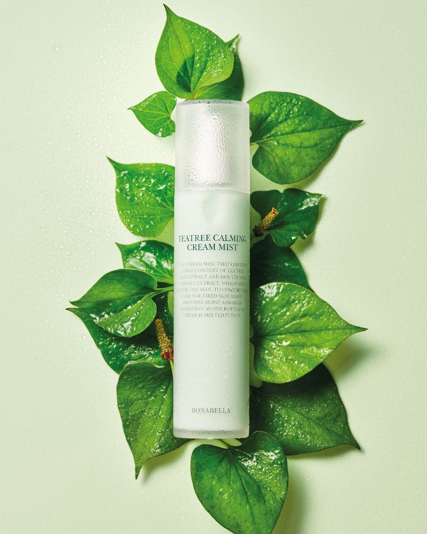 Teatree Calming Cream Mist