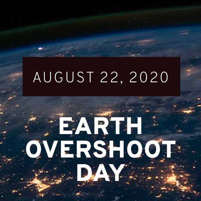 Earth Overshoot Day 2020: Unintentional Improvements are not a Sustainable Solution