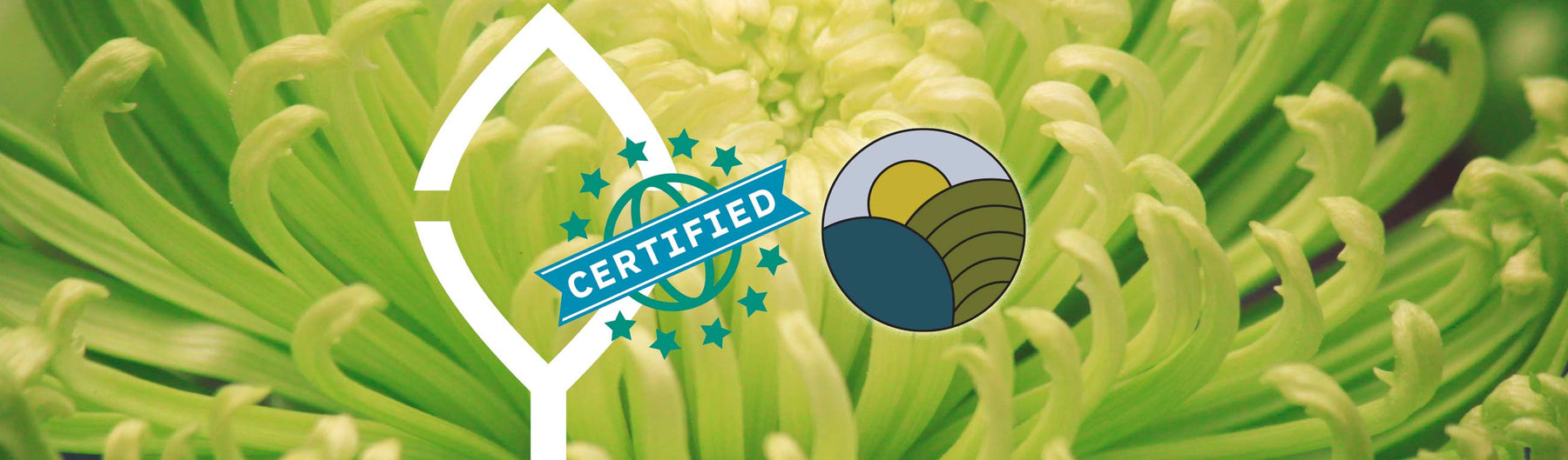 Cleanyst Earns USDA Certified Biobased Product Label
