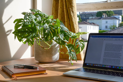 A bedroom home office setup with notepad, pen, laptop and plant