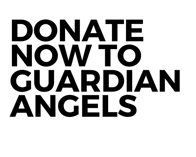 DONATE TO GUARDIAN ANGELS