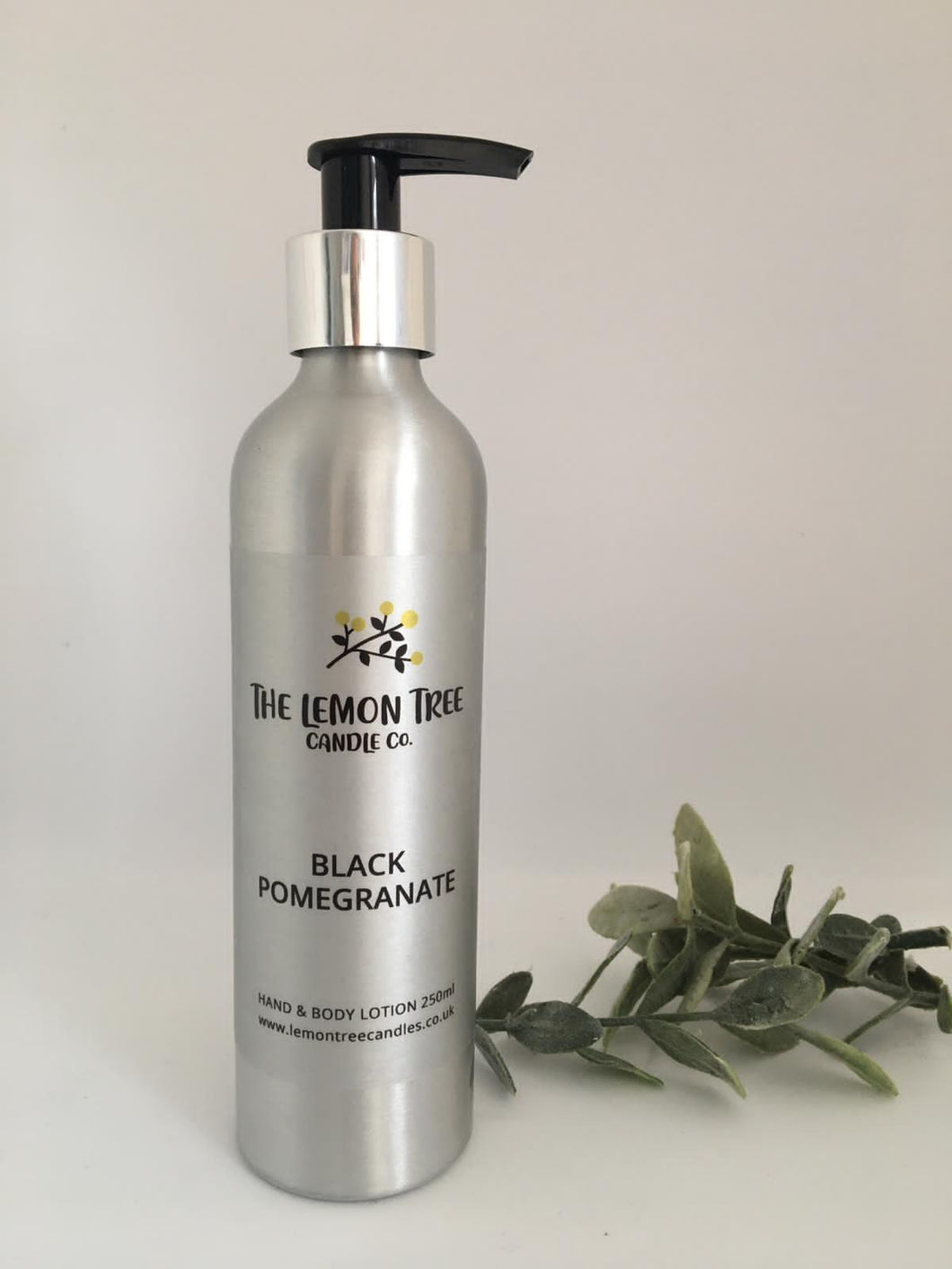 Black Pomegranate Hand & Body Lotion - The Lemon Tree Candle Company