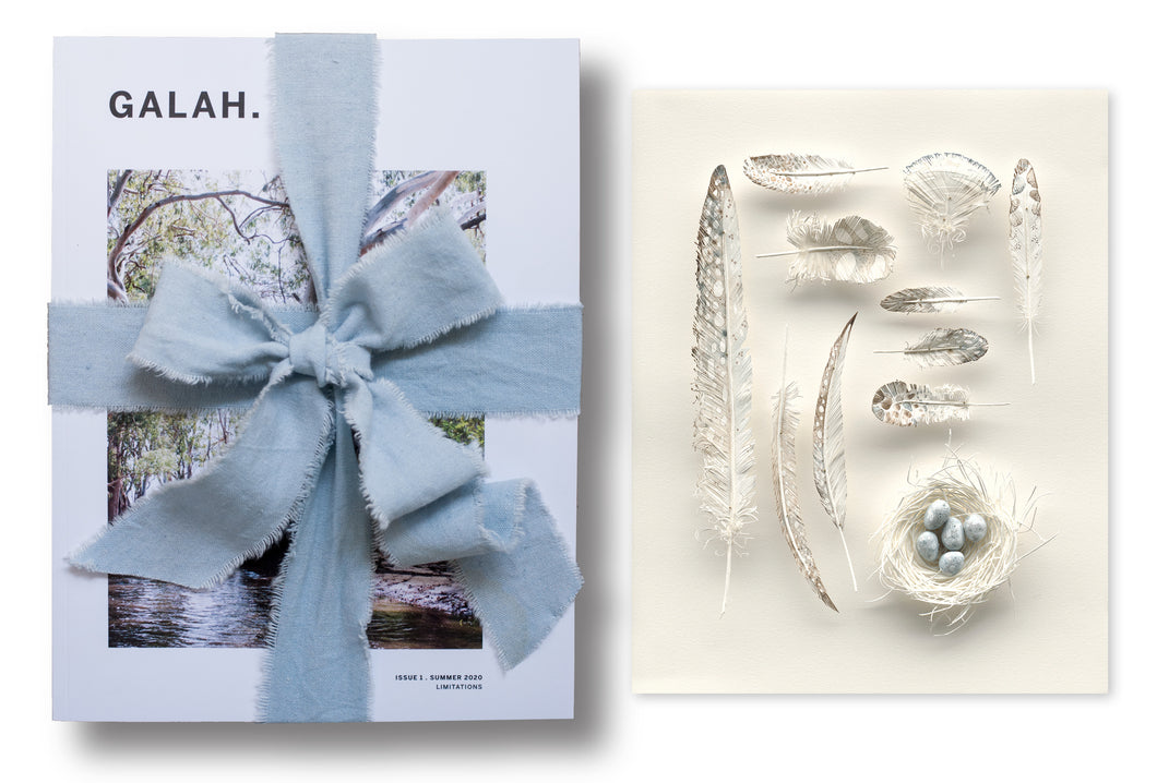 Gift Bundle: Art Print: 'That I may fly' by Colleen Southwell + Issue 1 of Galah
