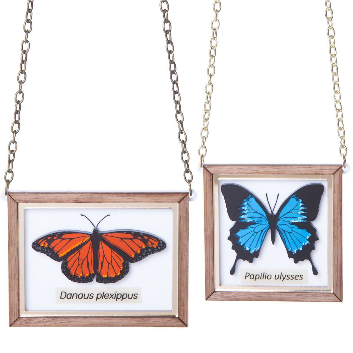 Sugar & Vice Mounted Butterfly Necklace